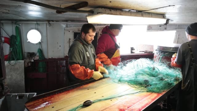 fishermen remove fish from a gill net while fishing aboard the three suns on lake superior on march 26, 2017 near ironwood, michigan. the three suns,... - gill stock videos & royalty-free footage