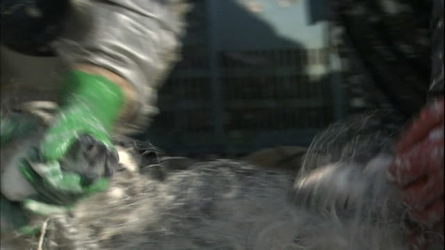 vídeos de stock, filmes e b-roll de fishermen remove herring from their net in the port of otaru in hokkaido, japan. - grupo mediano de animales