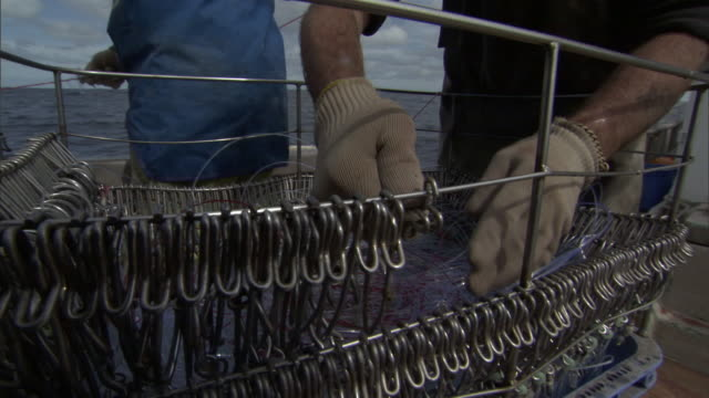 Fishermen retrieve hooks on long line fishing boat, New Zealand