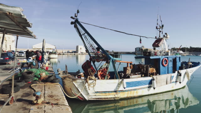 fishermen selling fish in trani, puglia, italy - fishing boat stock videos & royalty-free footage