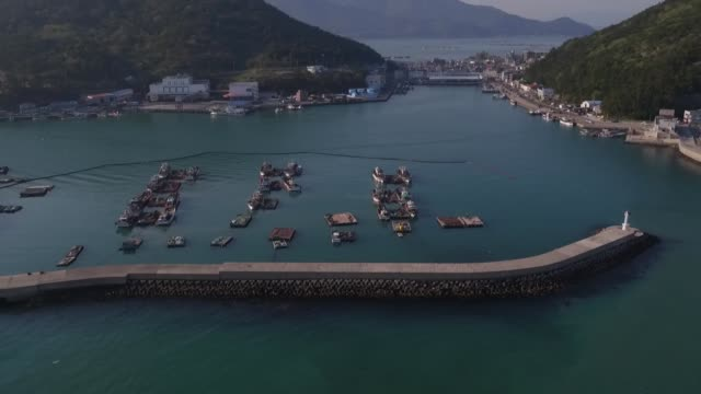 fishermen separate anchovies from a net on a barge moor ed between two fishing boats in this aerial video taken above mijo port in namhae south korea... - anchovy stock videos & royalty-free footage