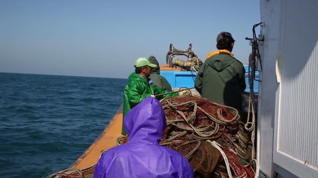 fishermen tend to a net during anchovy fishing on a boat in the sea near namhae south korea on tuesday april 19 a fisherman tends to a net during... - anchovy stock videos & royalty-free footage