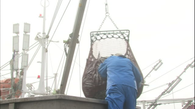 Fishermen unload sauries with a crane at the Hanasaki Port in Hokkaido, Japan.