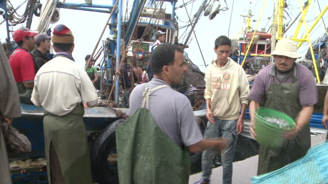MS Fishermen working at port  / Agadir, Unspecified, Morocco