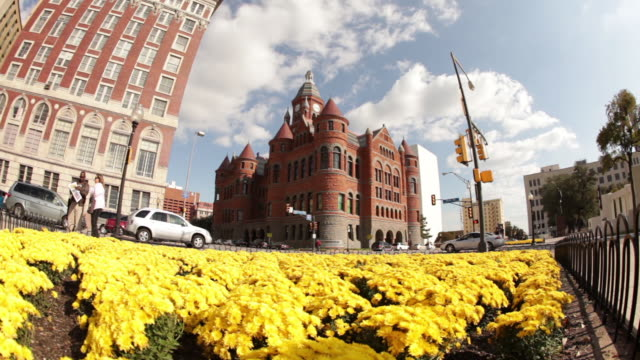 Fisheye dolly shot of Dallas panning over yellow flowers.