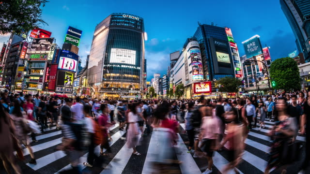 t/l ws fisheye view of shibuya crossing at dusk / tokyo, japan - giappone video stock e b–roll