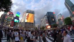 WS Fisheye View of Shibuya Crossing / Tokyo, Japan