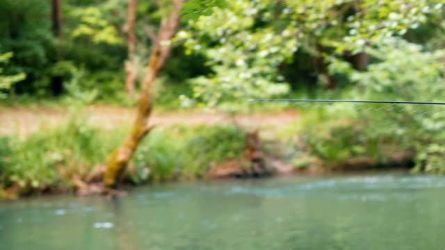 vídeos y material grabado en eventos de stock de pesca; un juego de devoción y entusiasmo - oficio agrícola