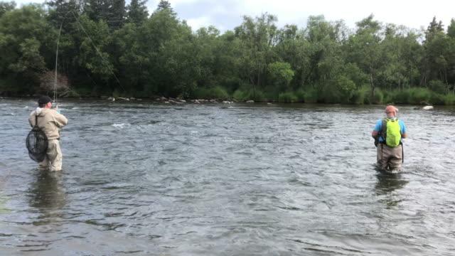 fishing at katmai national park, alaska. - survival stock videos & royalty-free footage