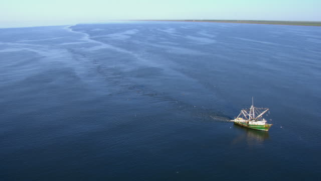 a fishing boat cruises in the gulf of mexico. - gulf of mexico stock videos & royalty-free footage