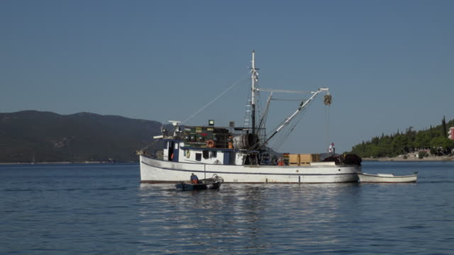 a fishing boat drives on peljesac channel - barca da pesca video stock e b–roll