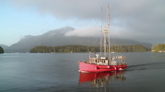 ms ts fishing boat heading out to sea / tofino, british columbia, canada - fishing industry stock videos & royalty-free footage