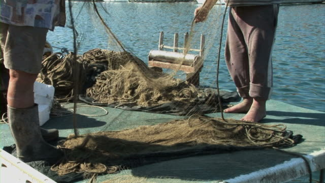fischerboot im meer - wasservogel stock-videos und b-roll-filmmaterial