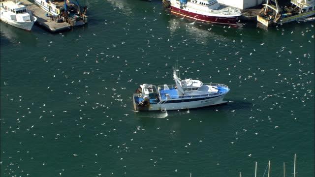 vidéos et rushes de zo, aerial, fishing boat in sete harbor, languedoc-roussillon, france - chalutier