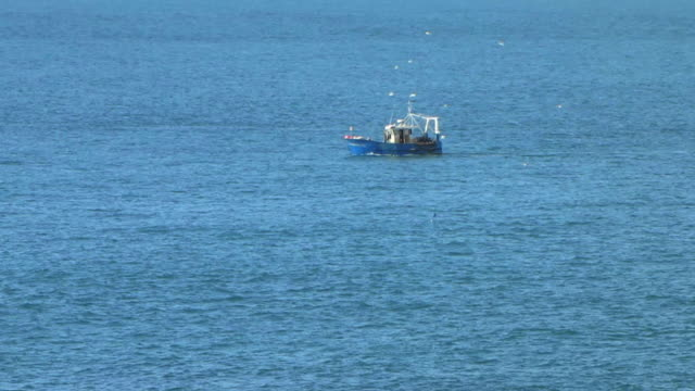 Fishing boat in the sea surrounded by hungry seagulls