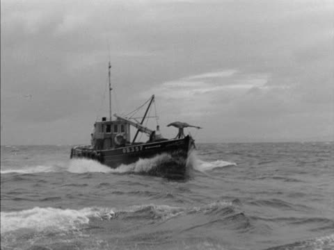 a fishing boat moves through choppy water - arpone video stock e b–roll