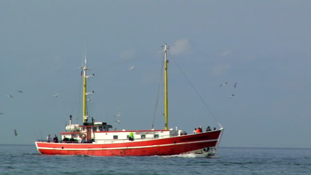 fishing boat on baltic sea - baltic sea stock videos and b-roll footage