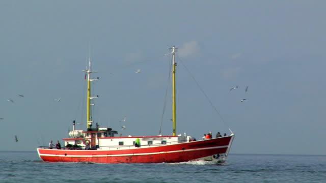 fischerboot auf der ostsee - ostsee stock-videos und b-roll-filmmaterial
