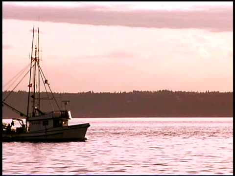 fishing boat on sea at sunset - pacific ocean stock videos & royalty-free footage
