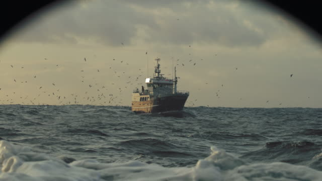 vidéos et rushes de fishing boat out in a rough sea - mouette