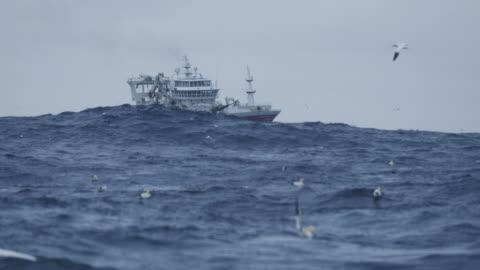 vídeos y material grabado en eventos de stock de vela de barco arrastrero de pesca hacia fuera en el mar - barco pesquero