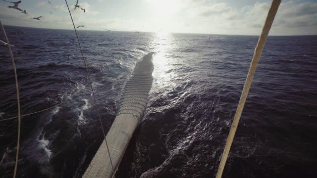 Trawler Fischereifahrzeug Boot: großer Fang von Fischen