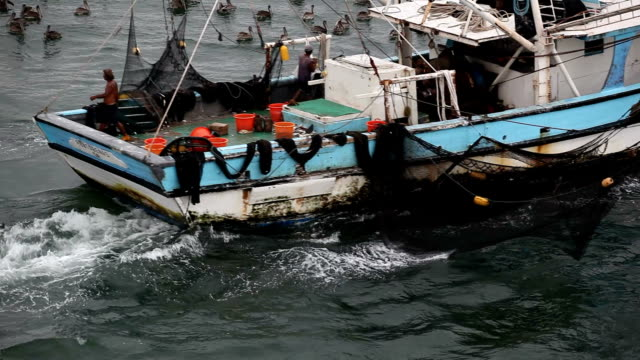 fishing boat - netting stock videos and b-roll footage