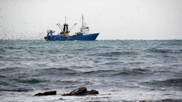 fishing boat with a catch - trawler stock videos & royalty-free footage