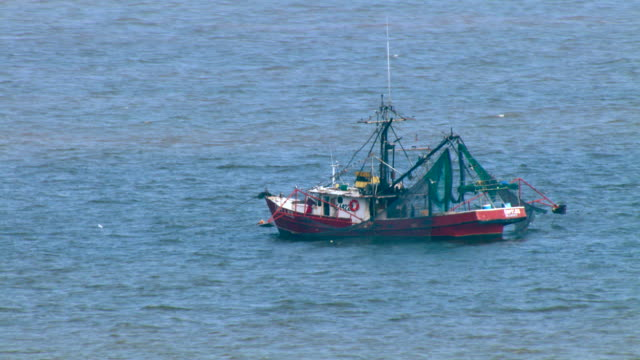 A fishing boat works in the Gulf of Mexico.