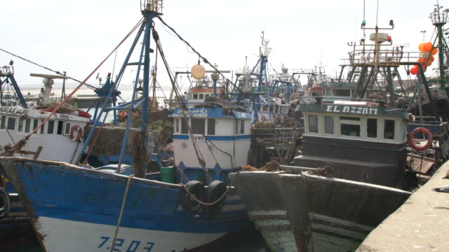 fishing boats anchored at essaouira harbour on the atlantic ocean in morocco - anchored stock videos & royalty-free footage