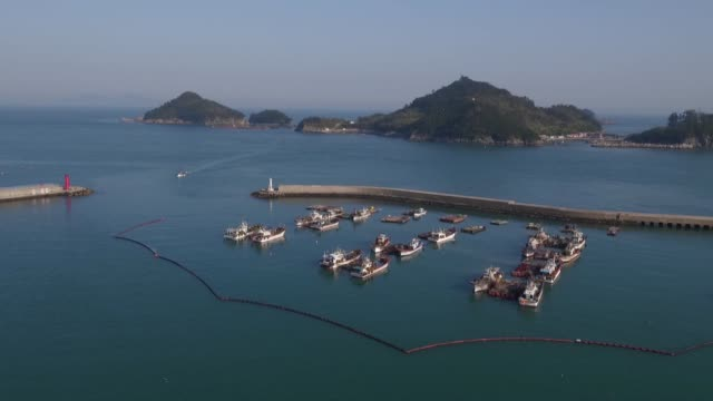 fishing boats and barges sit moored in this aerial video taken above mijo port in namhae south korea on tuesday april 19 2016 - anchovy stock videos & royalty-free footage