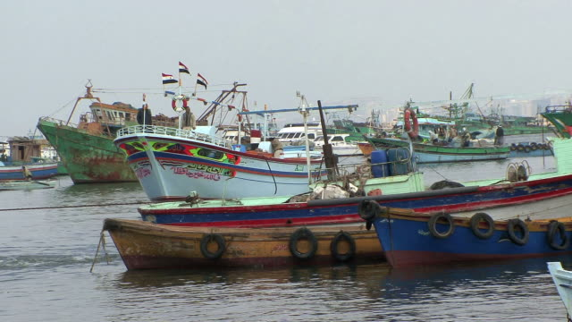 ws fishing boats and trawlers anchored in alexandria bay, alexandria, egypt - anchored stock videos & royalty-free footage