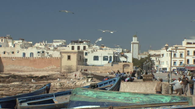 WS Fishing boats ashore with hovering seagulls, Essaouira, Morocco