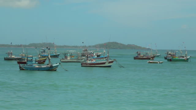 fishing boats at harvour - sri lankan culture stock videos & royalty-free footage