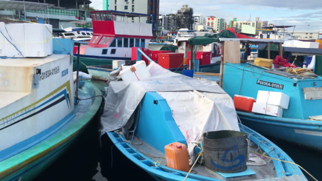 fishing boats at male fish market on december 16 2019 in male maldives the maldives is the worlds lowest lying country with a highest natural point... - pressure point stock videos & royalty-free footage