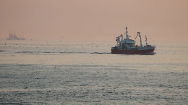 fishing boats at sunset on a calm north sea - fishing industry stock videos & royalty-free footage