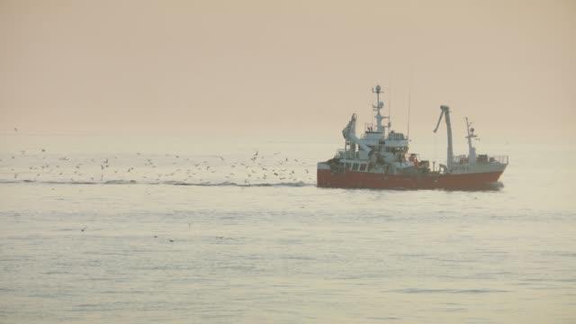 angelboote/fischerboote bei sonnenuntergang auf einem ruhigen nordsee - passagier wasserfahrzeug stock-videos und b-roll-filmmaterial