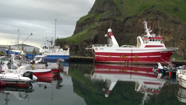 fishing boats at the heimaey harbour early in the morning, vestmannaeyjar - 1963 stock videos & royalty-free footage
