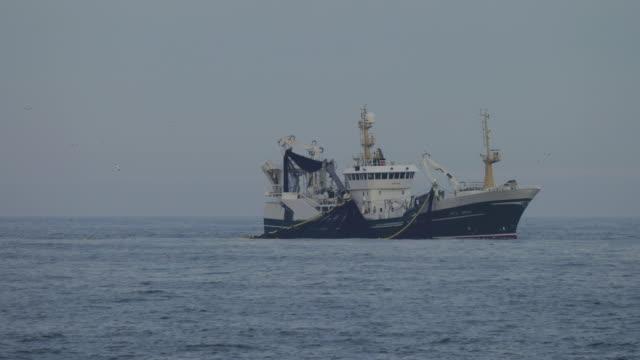 fishing boats at work in the north sea - pesca attività all'aperto video stock e b–roll