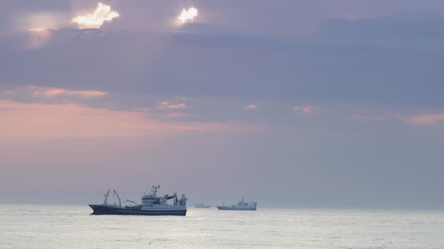 vidéos et rushes de fishing boats at work in the north sea - pêcheur