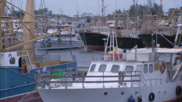 ms fishing boats docked at a pier / adelaide river, northern territory, australia - adelaide river stock videos & royalty-free footage