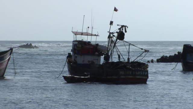 ws pan fishing boats in harbor, antofagasta, chile - antofagasta region stock videos and b-roll footage