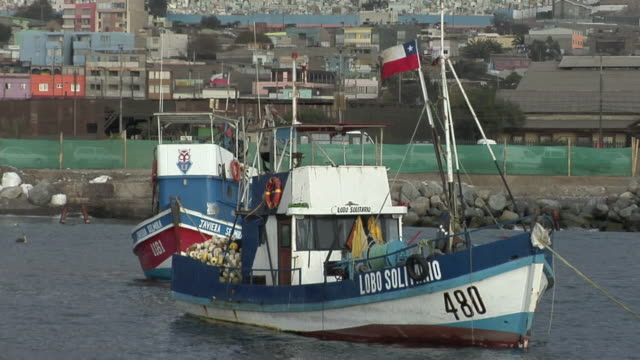 ms fishing boats in harbor with cityscape in background, antofagasta, chile - antofagasta region stock videos and b-roll footage