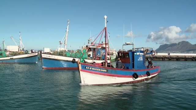 WS PAN Fishing boats in Kalk Bay Harbor, Western Cape, South Africa