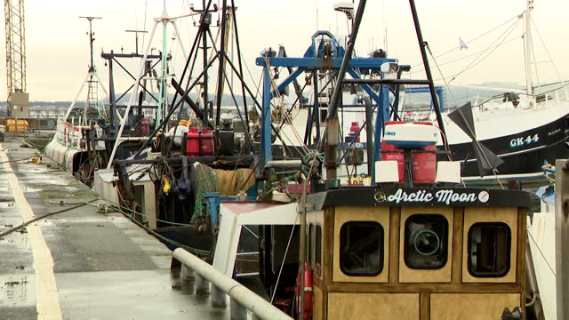 "fishing boats in port of troon, not sailing, due to seafood rejected by european importers after delays at eu borders - ""bbc news"" stock videos & royalty-free footage"