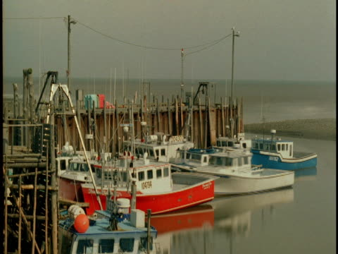 Fishing boats lower as the tide recedes on the Bay of Fundy.