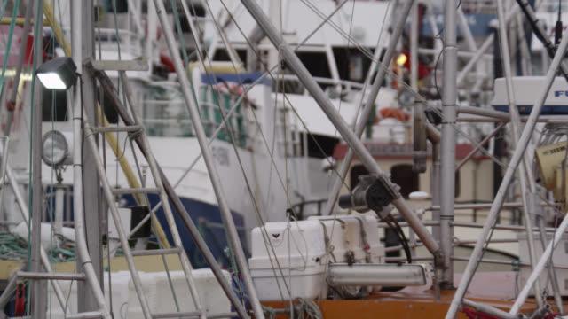 fishing boats moored in harbour, andenes, norway - tauwerk stock-videos und b-roll-filmmaterial