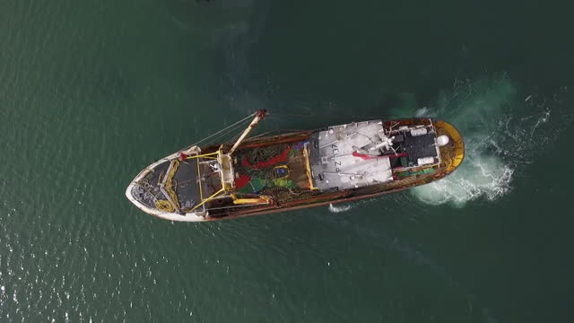 stockvideo's en b-roll-footage met fishing boats on water in newlyn, cornwall - brexit