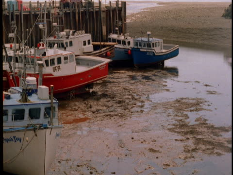 Fishing boats rise and fall with incoming and outgoing tides on the Bay of Fundy.