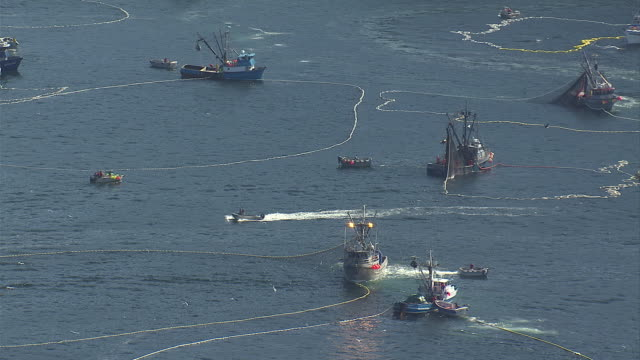 vídeos de stock e filmes b-roll de fishing boats set their nets. available in hd. - rede de pesca comercial